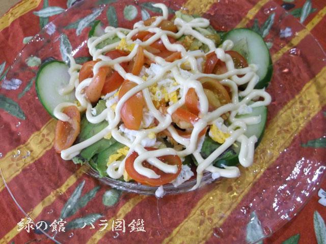 緑の館 バラ図鑑: トマトのサラダ